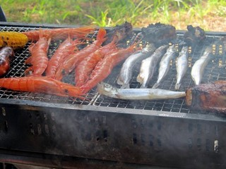 BBQ1-479x360.jpg.pagespeed.ce.NB7TF_P8GP.jpg